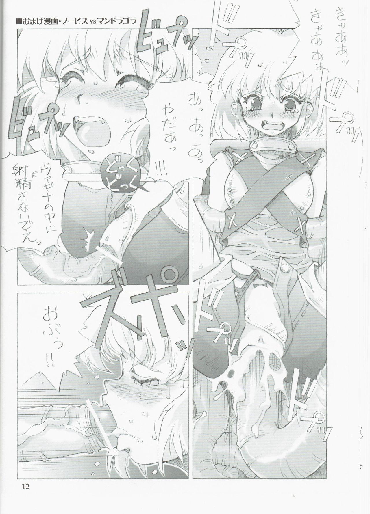Tempo Gensui no Rakugakichou 11