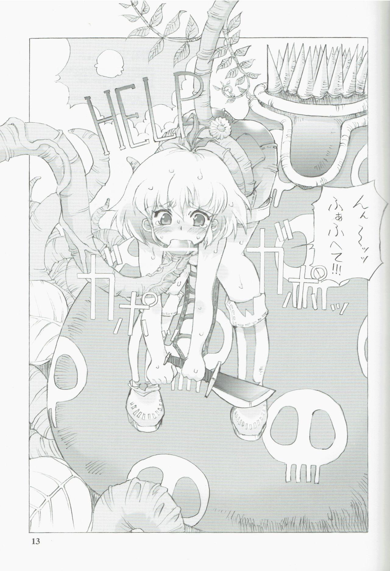 Tempo Gensui no Rakugakichou 12