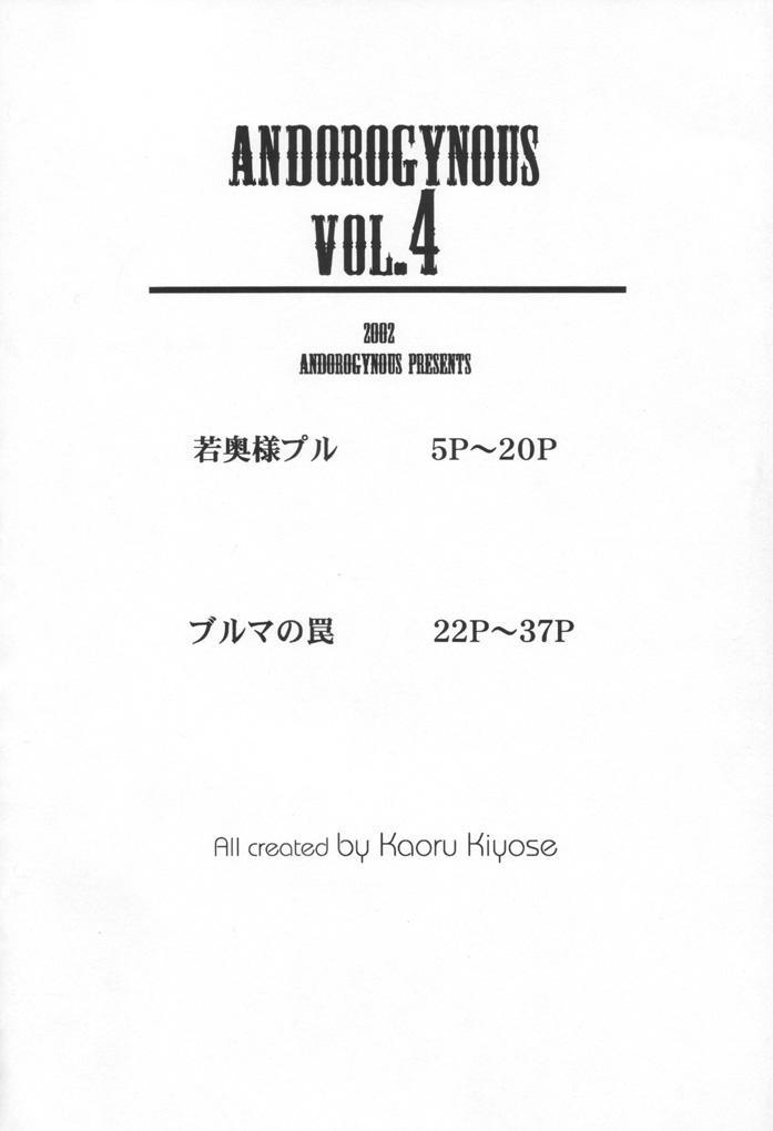 Andorogynous Vol. 4 2