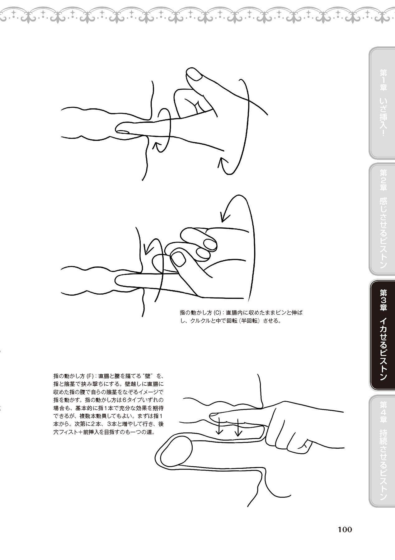 膣挿入&ピストン運動完全マニュアル イラスト版……ピスとんッ! 101