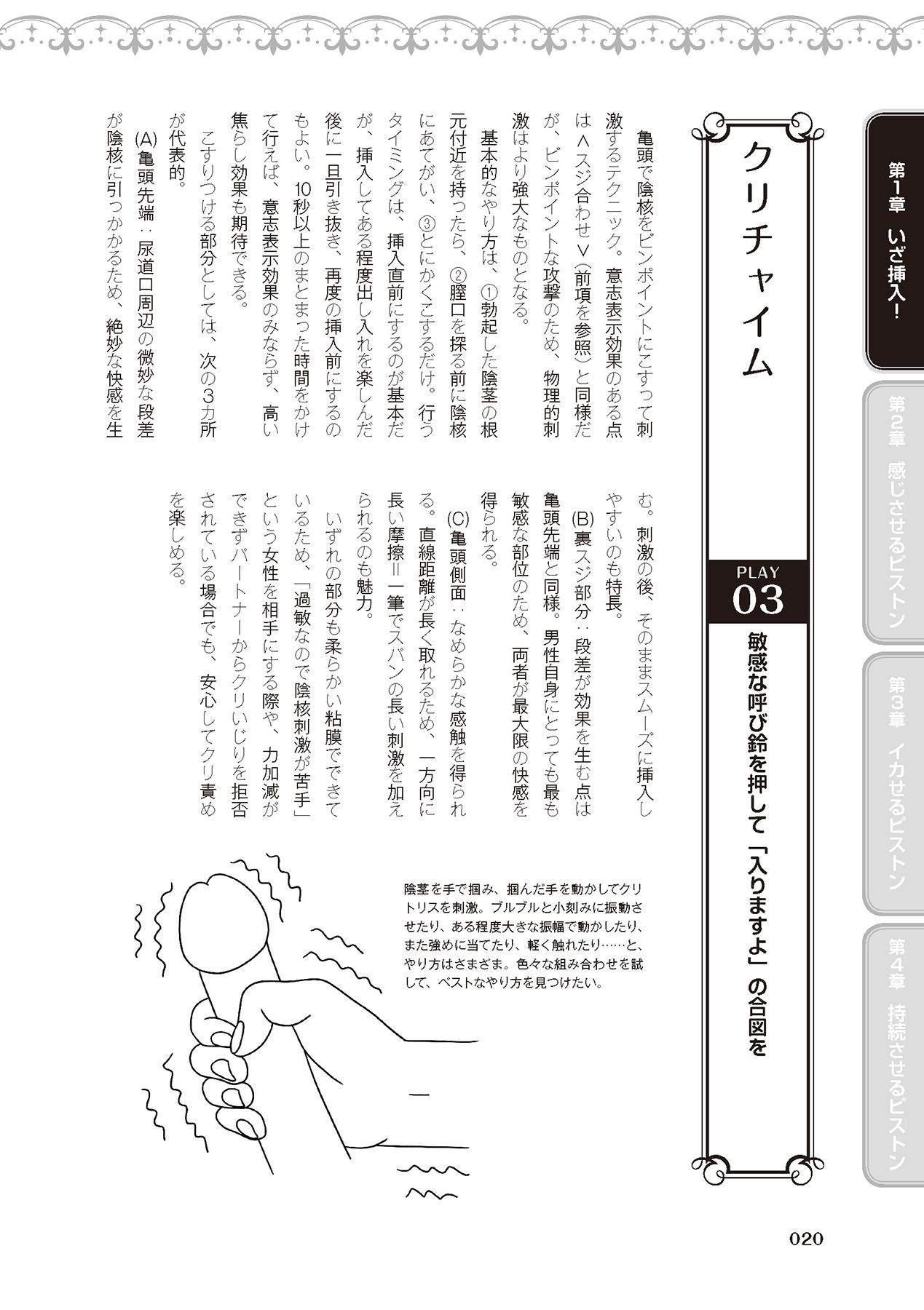 膣挿入&ピストン運動完全マニュアル イラスト版……ピスとんッ! 21