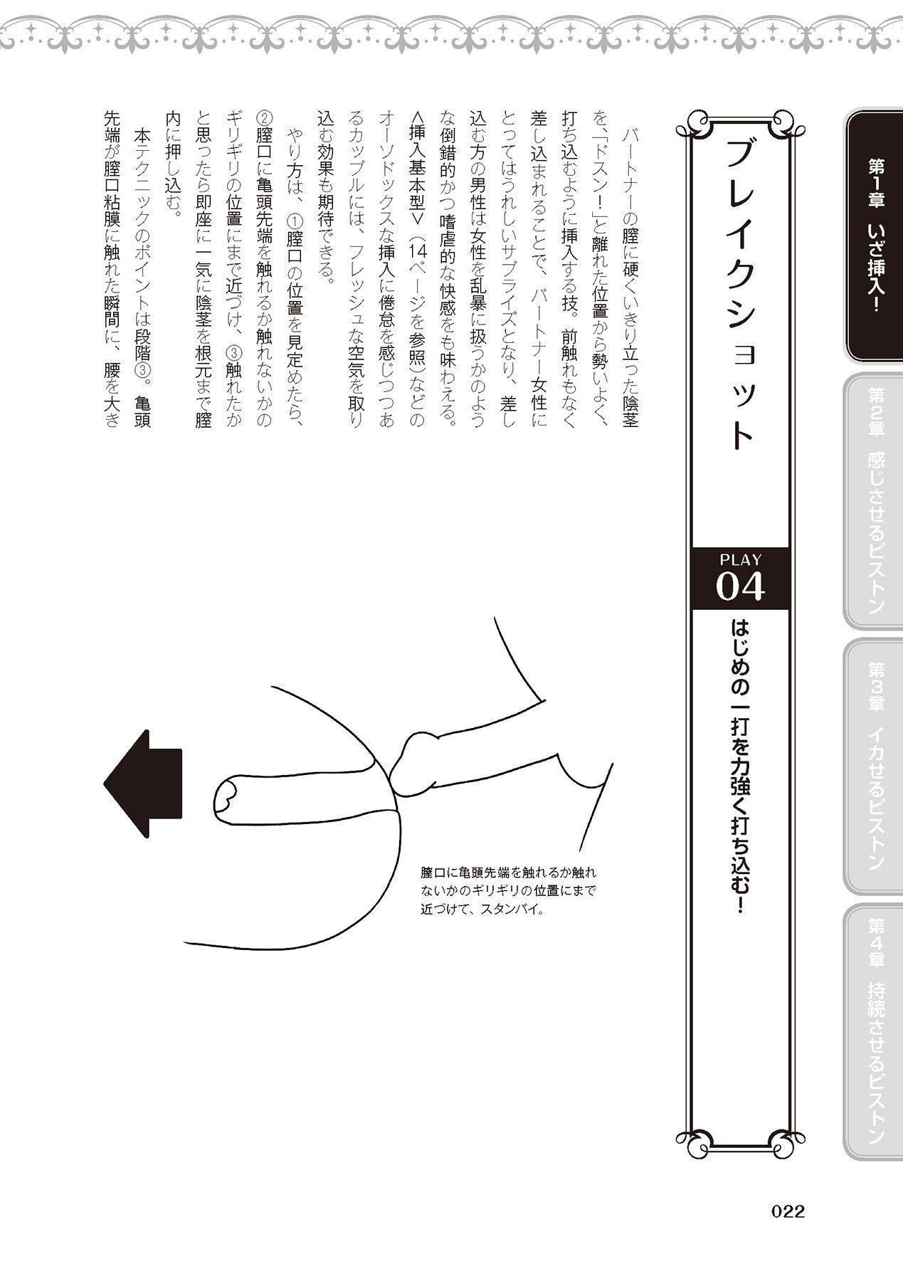 膣挿入&ピストン運動完全マニュアル イラスト版……ピスとんッ! 23