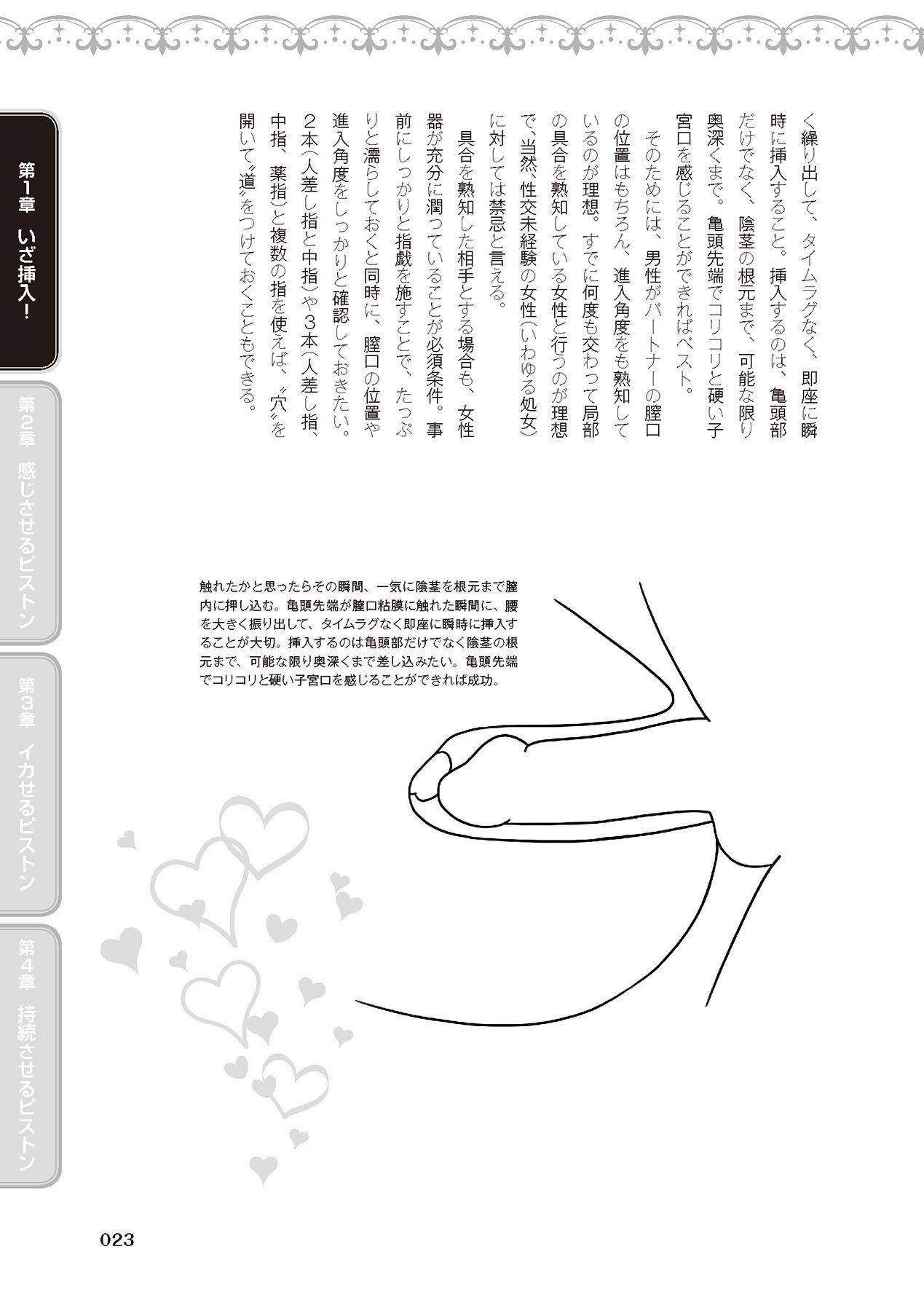 膣挿入&ピストン運動完全マニュアル イラスト版……ピスとんッ! 24