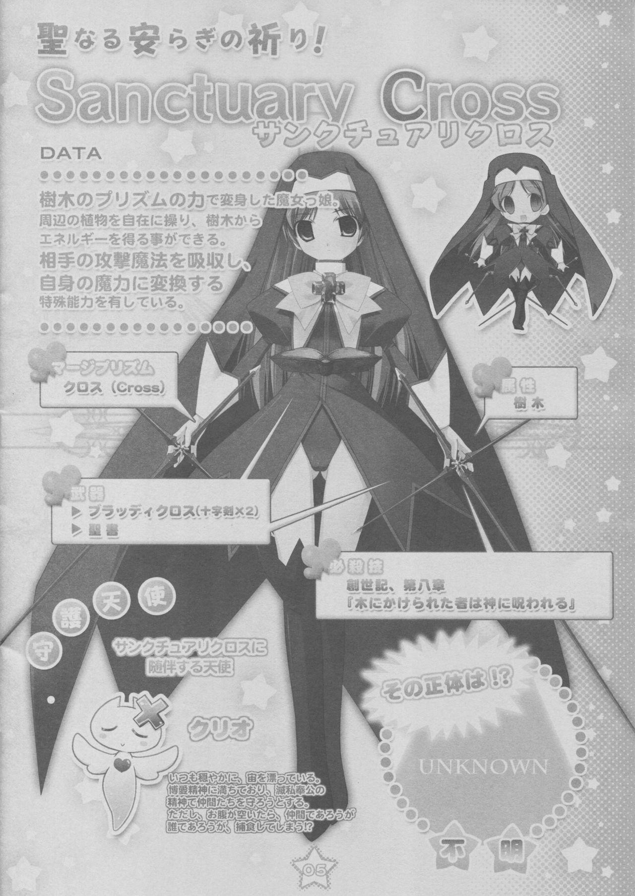 PRISM MERGICAL 5
