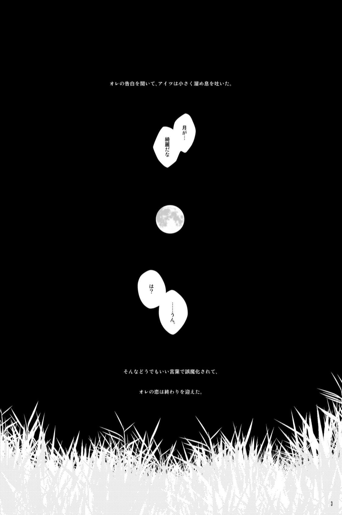 STRAWBERRY-FIELDS 1