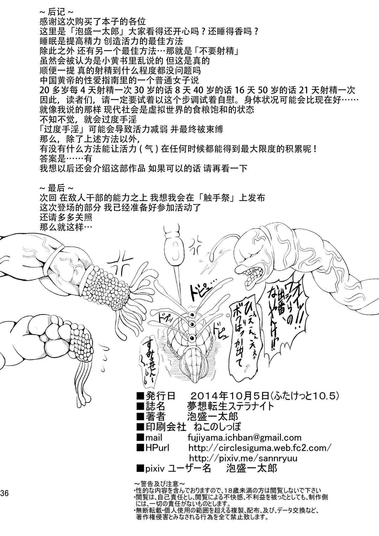 Musou Tensei Stella Knight 35