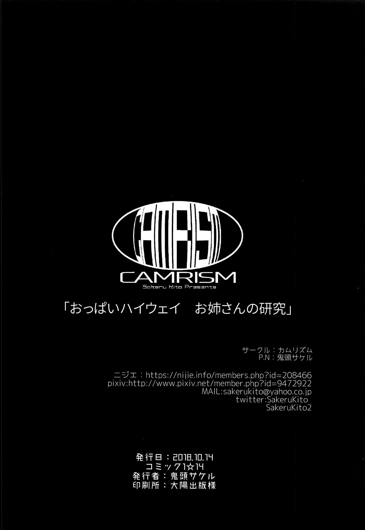 (COMIC1☆14) [Camrism (Kito Sakeru)] Oppai Highway - Onee-san no Kenkyuu (Penguin Highway) [English] [Kaijuko] 24