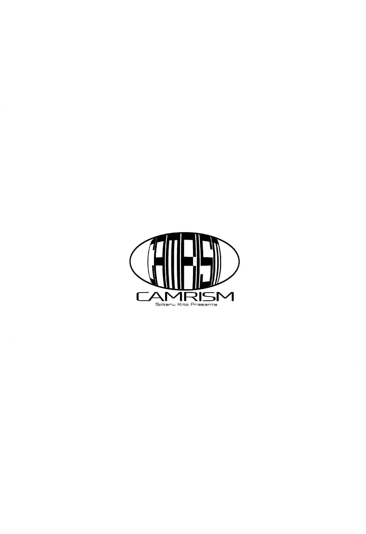 (COMIC1☆14) [Camrism (Kito Sakeru)] Oppai Highway - Onee-san no Kenkyuu (Penguin Highway) [English] [Kaijuko] 25
