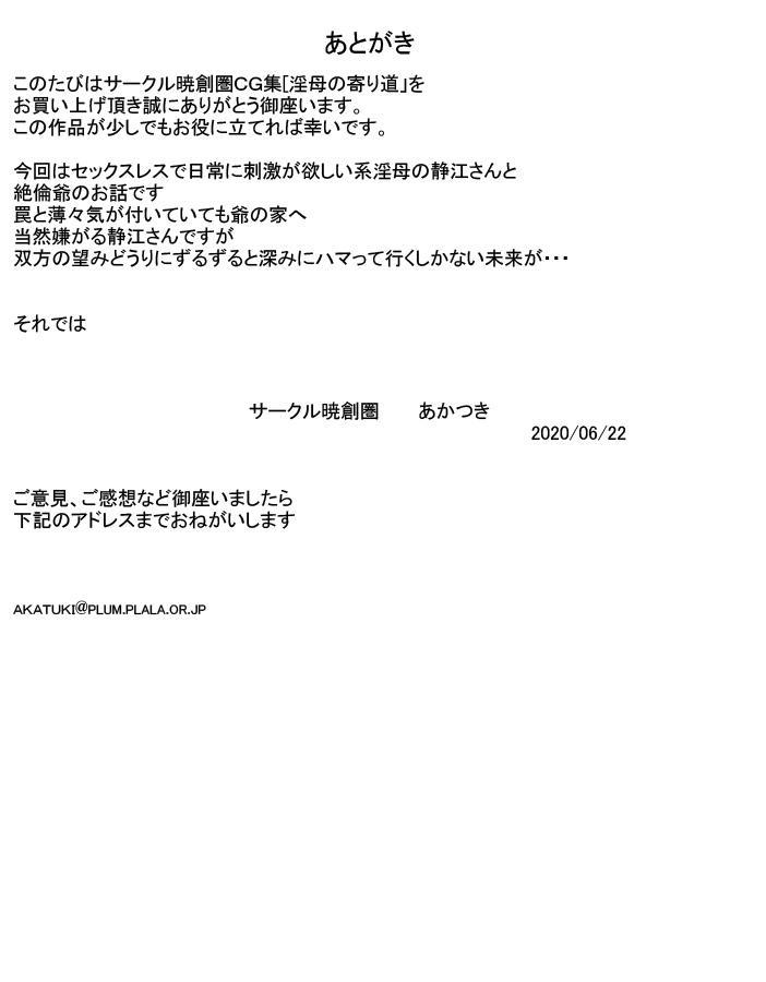 Inbo No Yorimichi 29