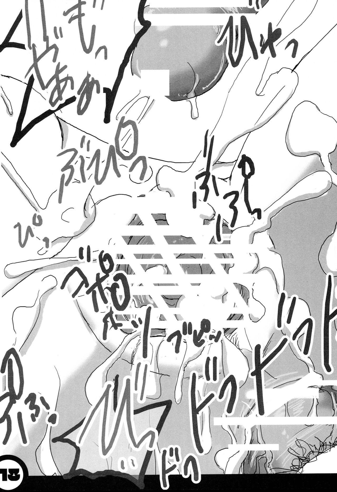 Himitsu no Kagamin 17