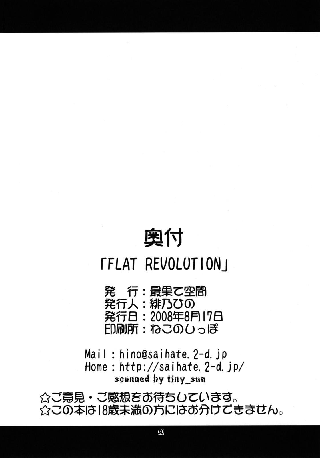 FLAT REVOLUTION 29