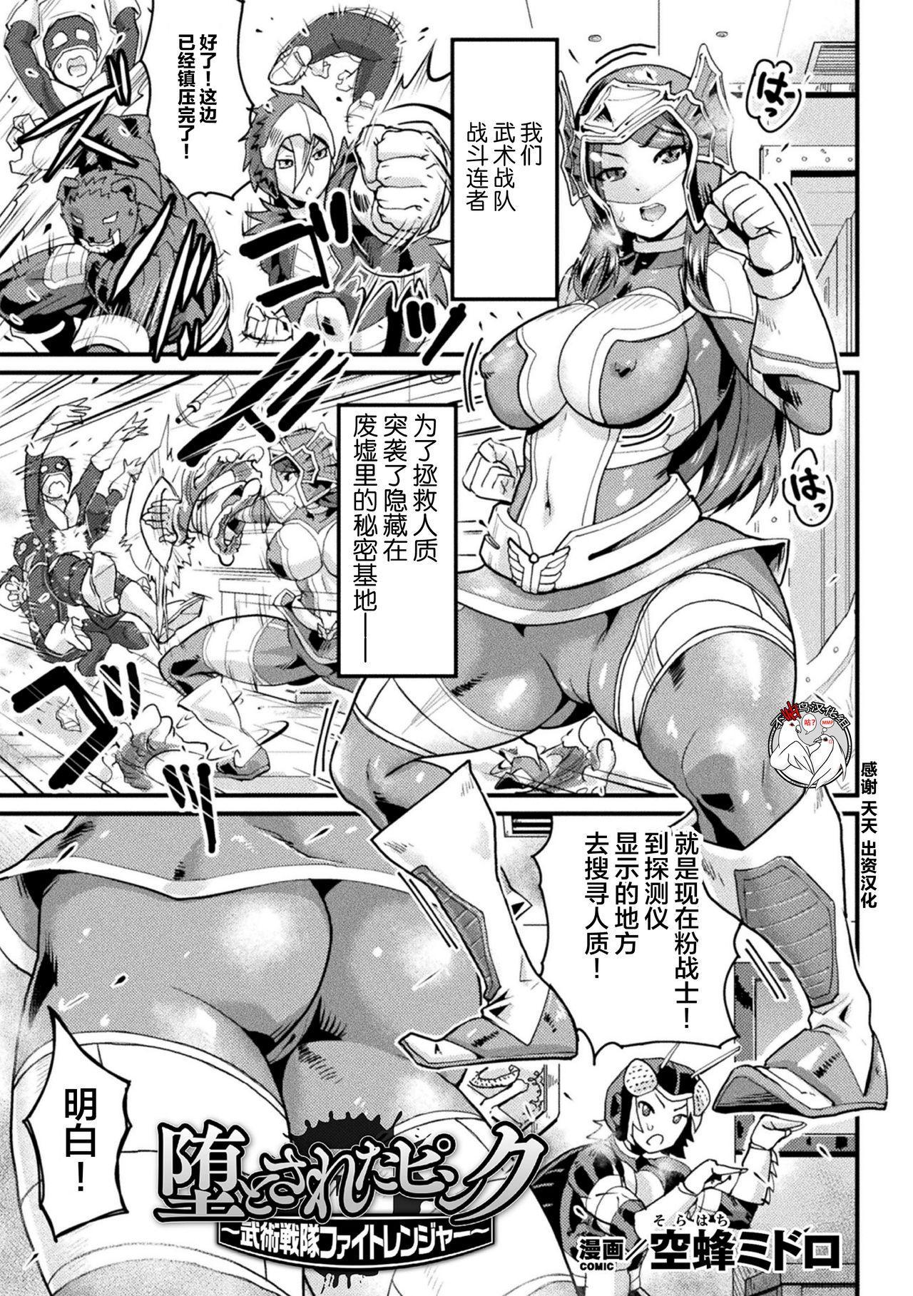 堕とされたピンク ~武術戦隊ファイトレンジャー~ 0