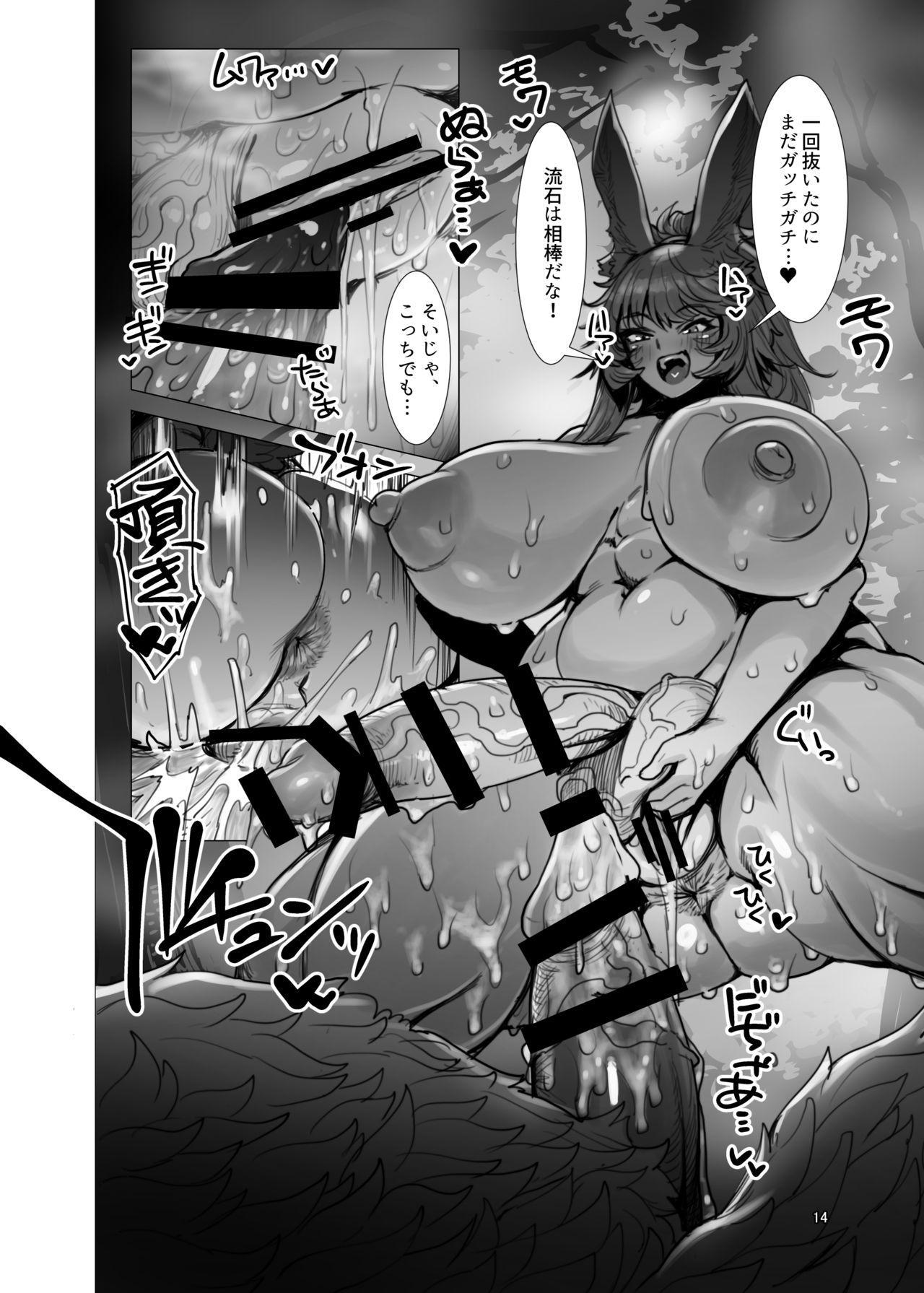 Souzou Mahou no Chottoshita Ouyou 13