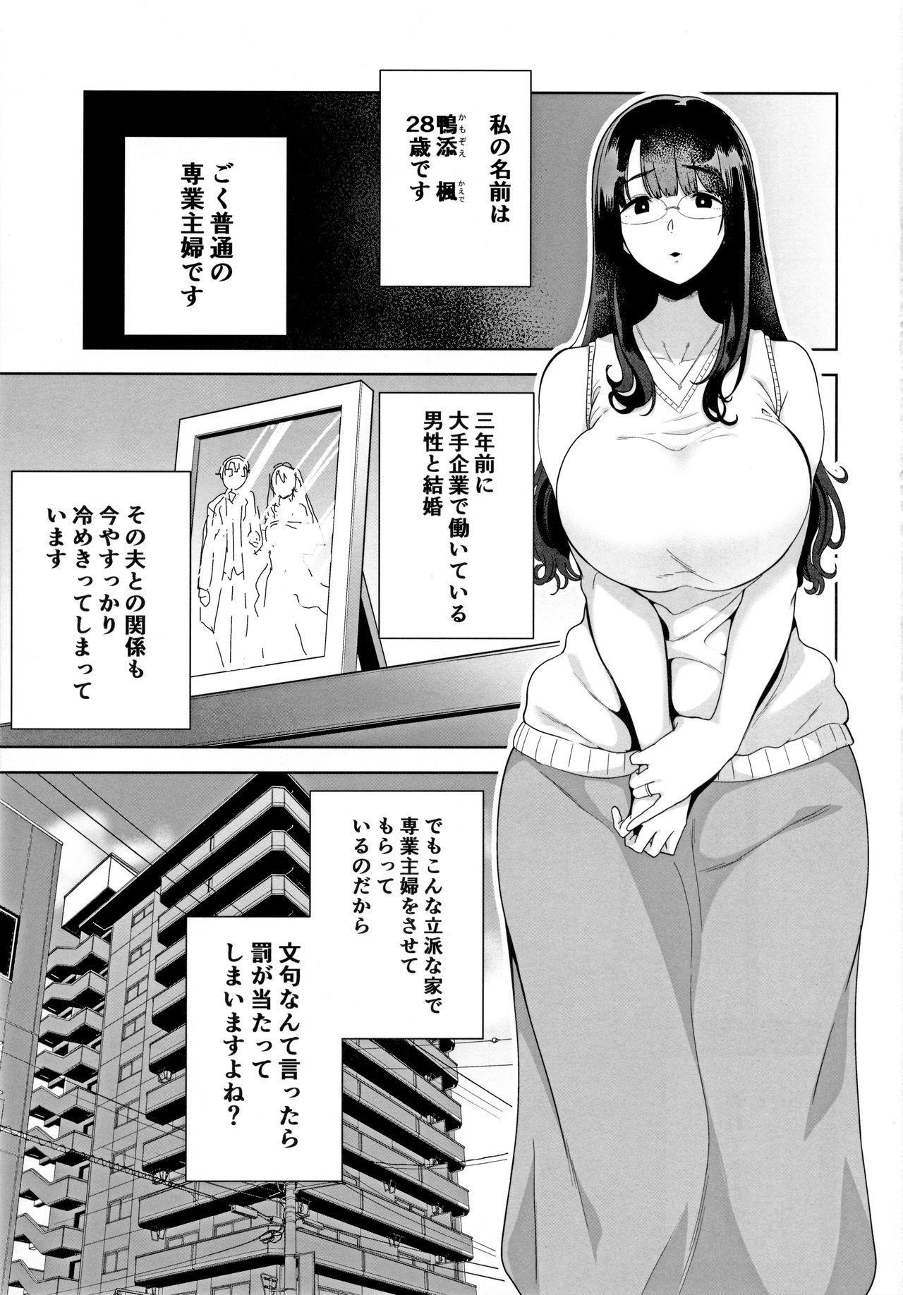 Wild-shiki Nihonjin Tsuma no Netorikata Sono Ichi 1