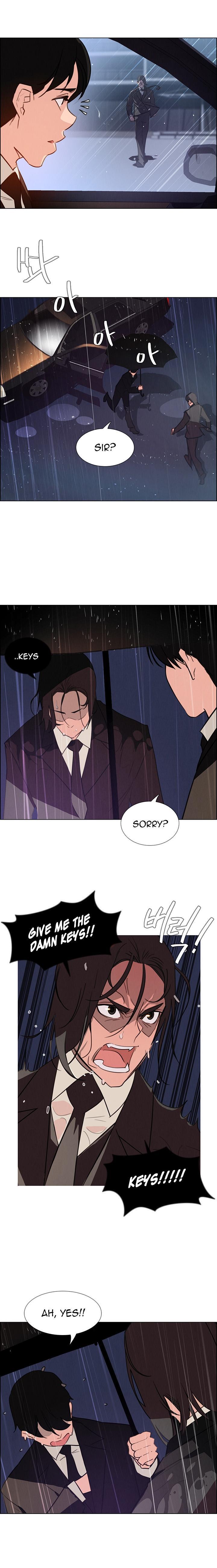Rain Curtain Ch.30/40 621