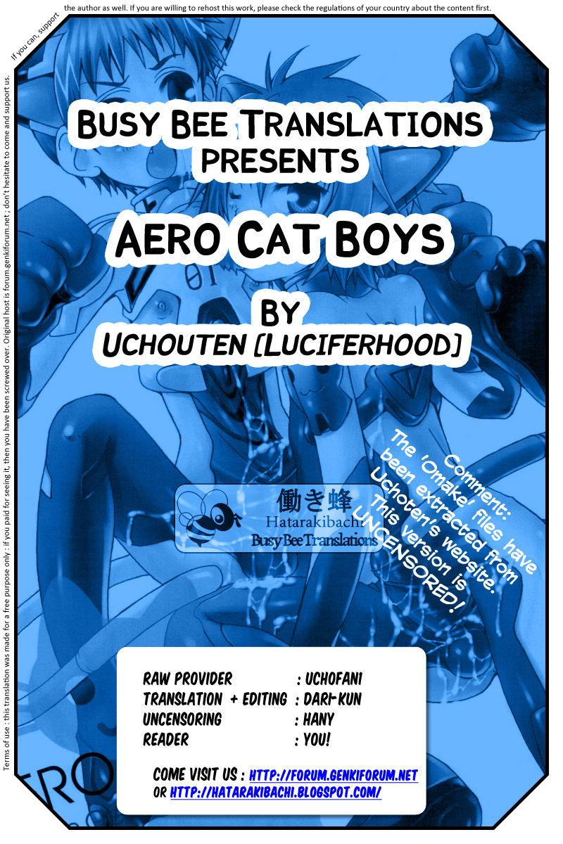 Aero Cat Boys 10