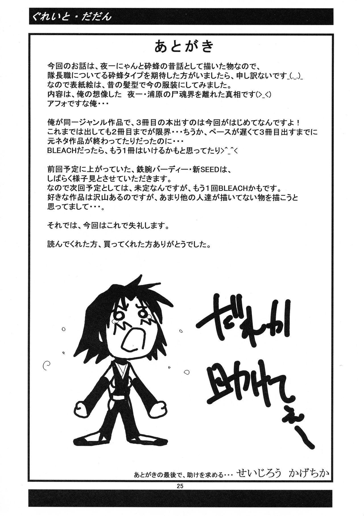Yoruichi Nyan to Soi Fon no Hon 24