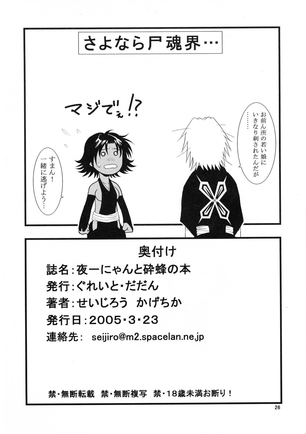 Yoruichi Nyan to Soi Fon no Hon 25