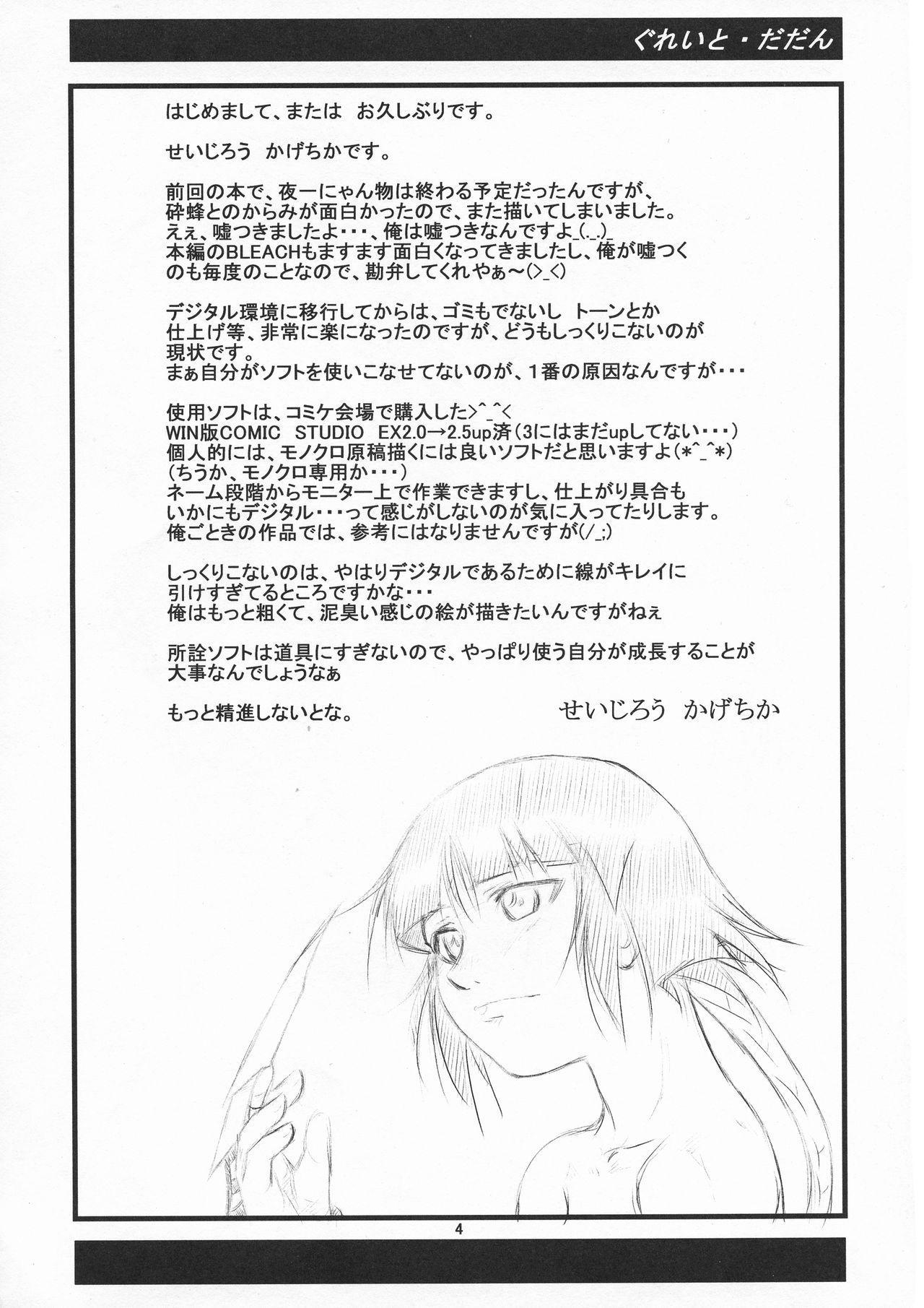 Yoruichi Nyan to Soi Fon no Hon 3