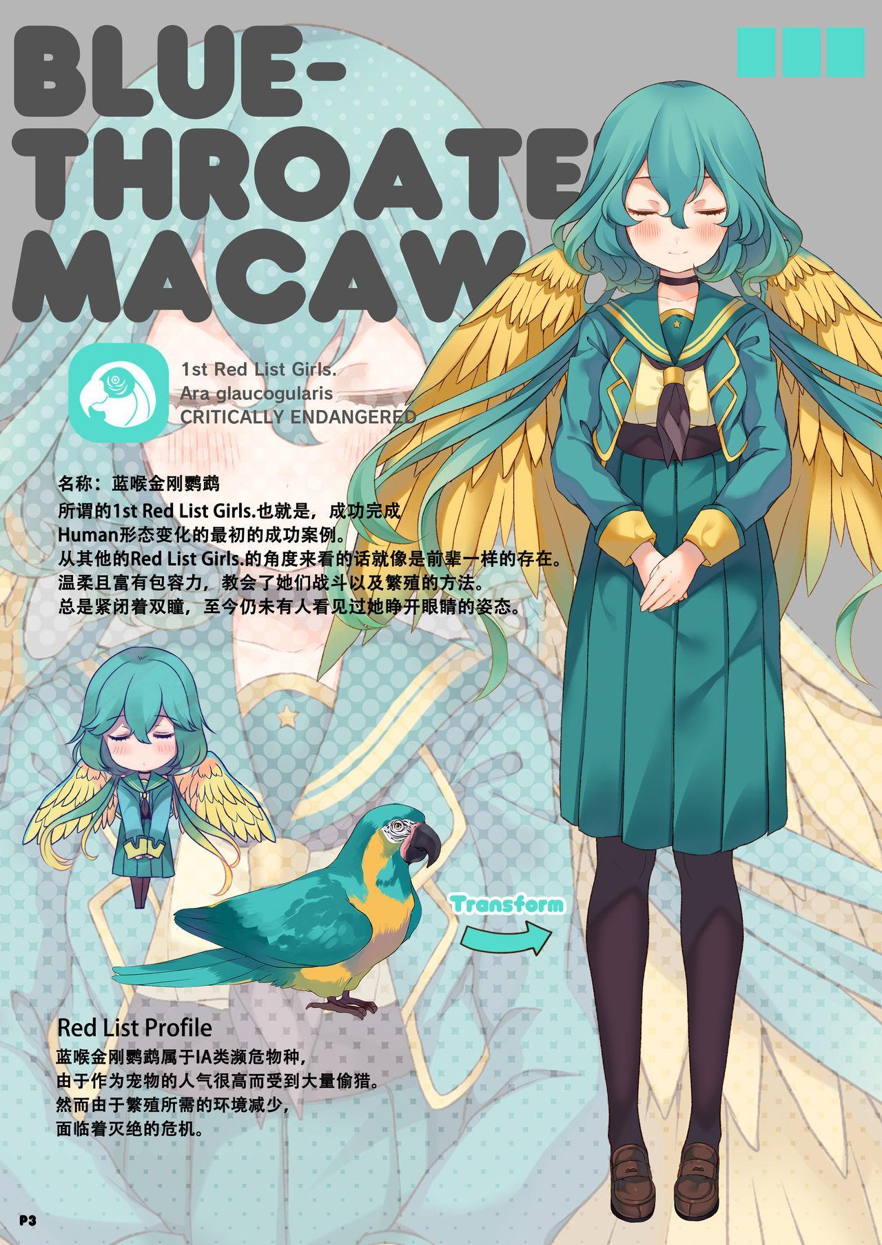 MACAW;EDUCATION 3